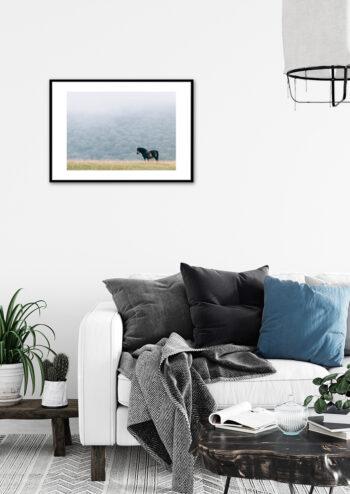 Poster Pferd im Nebel Poster 2