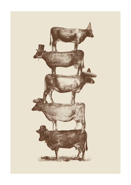 Poster Cow Cow Nuts Poster 1